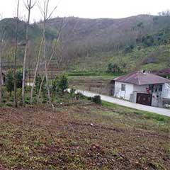 خرید زمین باغ مسکونی