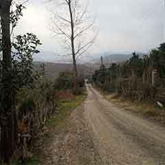 خرید زمین در اکبرسرا
