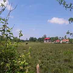 خرید زمین مسکونی در گیلان