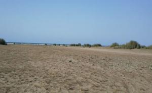 فروش زمین هکتار بالا سنددار بر اول ساحلی دریای خزر